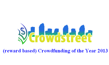 Crowdfunding of the year 2013